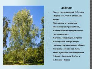 Задачи: Анализ стихотворений С.Есенина «Берёза» и А. Фета «Печальная берёза».