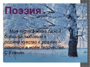Поэзия Есенина Моя лирика жива одной большой любовью к родине,чувство к родин