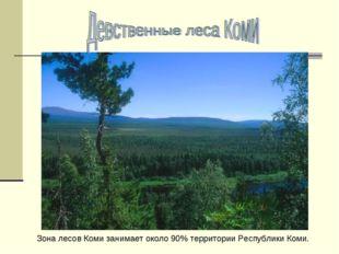 Зона лесов Коми занимает около 90% территории Республики Коми.
