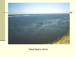 Левый берег р. Волга