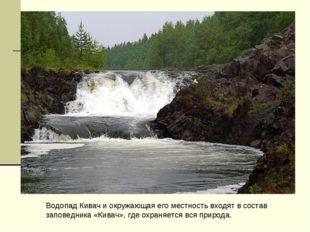 Водопад Кивач и окружающая его местность входят в состав заповедника «Кивач»,