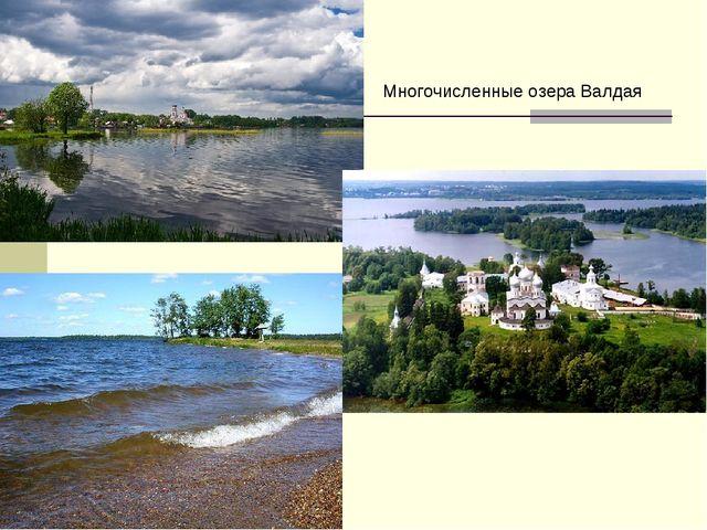 Многочисленные озера Валдая