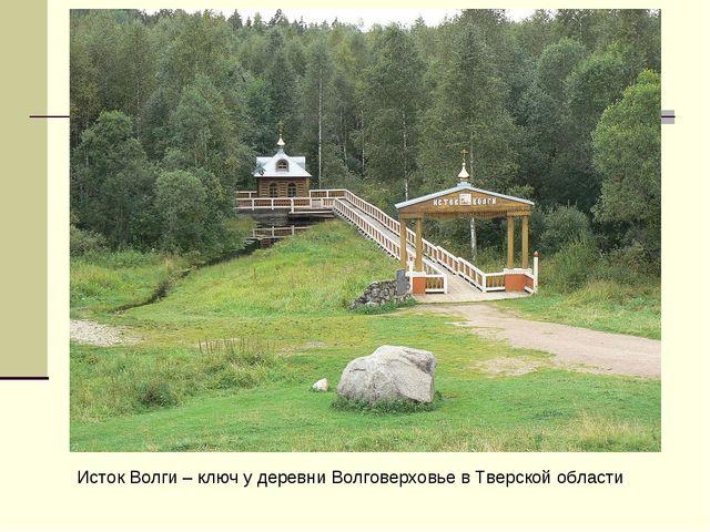 Исток Волги – ключ у деревни Волговерховье в Тверской области
