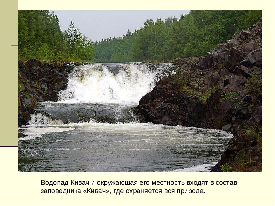 Водопад Кивач и окружающая его местность входят в состав заповедника «Кивач»,...