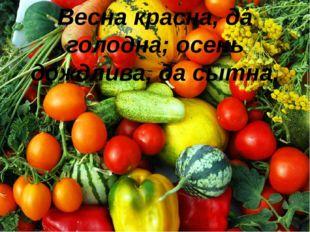 Весна красна, да голодна; осень дождлива, да сытна.