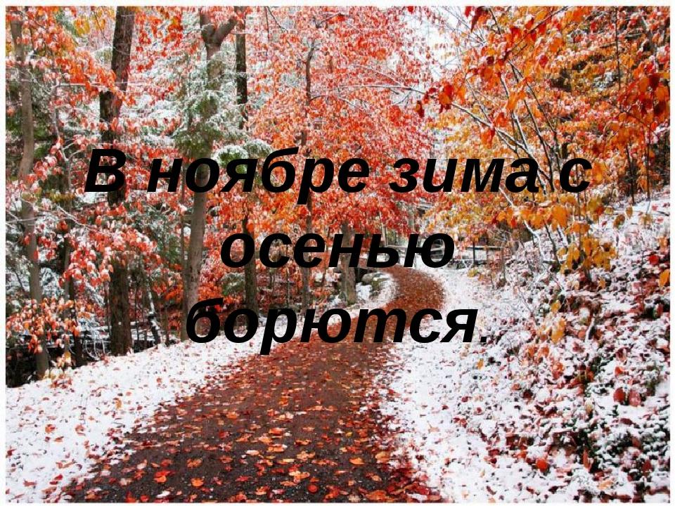 В ноябре зима с осенью борются.