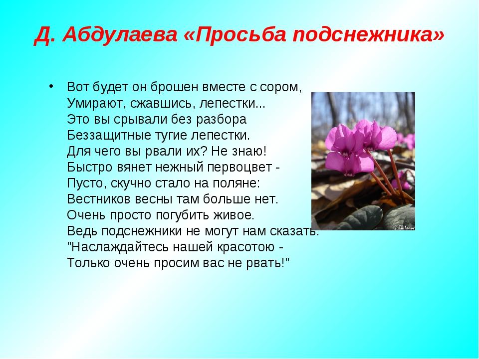 Д. Абдулаева «Просьба подснежника» Вот будет он брошен вместе с сором, Умираю...