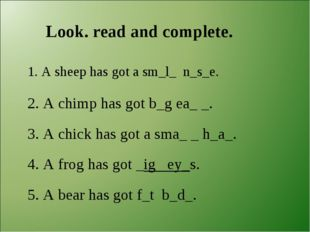Look. read and complete. 1. A sheep has got a sm_l_ n_s_e. 2. A chimp has got