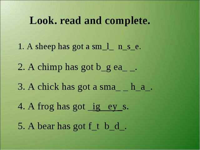 Look. read and complete. 1. A sheep has got a sm_l_ n_s_e. 2. A chimp has got...