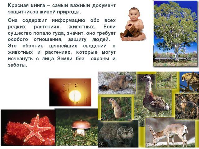 Красная книга – самый важный документ защитников живой природы. Она содержит...