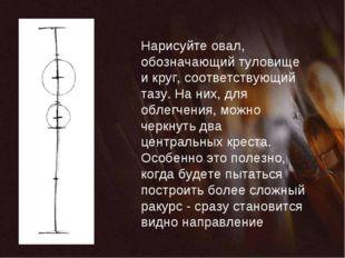 Нарисуйте овал, обозначающий туловище и круг, соответствующий тазу. На них, д