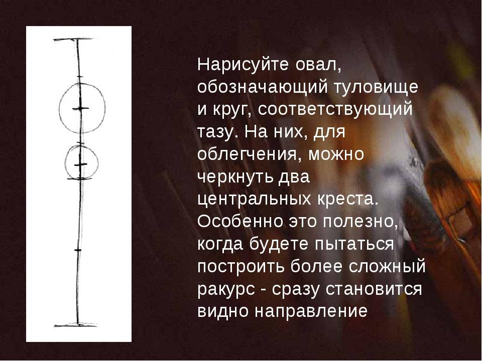 Нарисуйте овал, обозначающий туловище и круг, соответствующий тазу. На них, д...