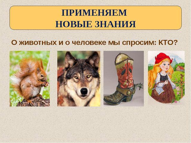 О животных и о человеке мы спросим: КТО? ПРИМЕНЯЕМ НОВЫЕ ЗНАНИЯ