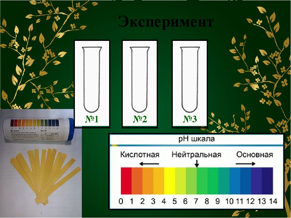 Эксперимент №1 №2 №3