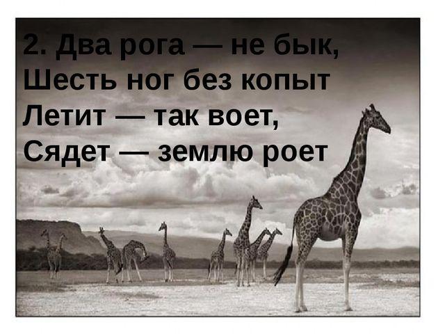 2. Два рога — не бык, Шесть ног без копыт Летит — так воет, Сядет — землю роет