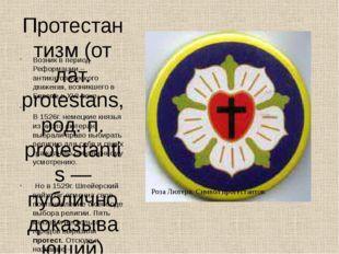 Протестантизм (от лат. protestans, род. п. protestantis — публично доказывающ