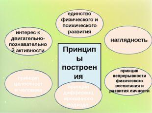 Принципы построения проекта принцип целостности человека принцип дифференциро