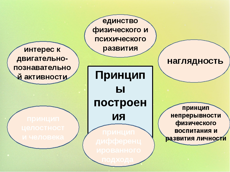 Принципы построения проекта принцип целостности человека принцип дифференциро...