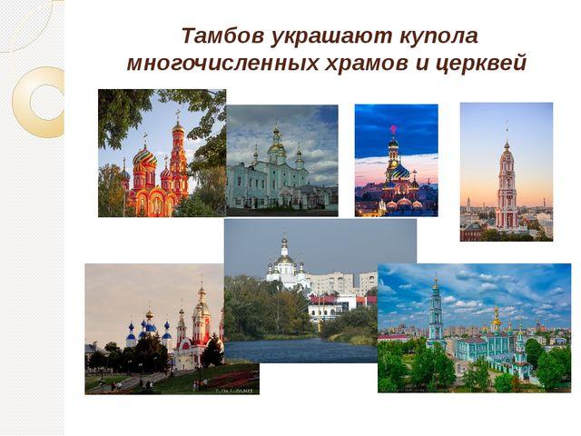 Тамбов украшают купола многочисленных храмов и церквей