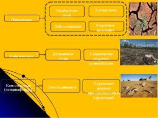 Почвенные Загрязнение почв Эрозия почв Заболачивание Вторичное засоление Био