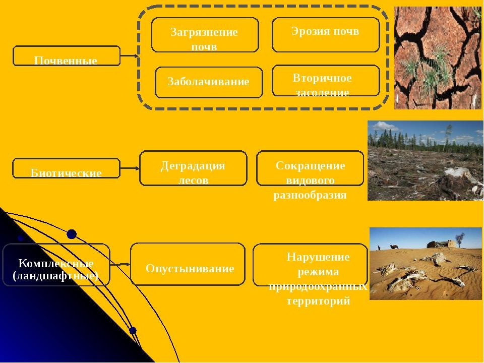 Почвенные Загрязнение почв Эрозия почв Заболачивание Вторичное засоление Био...
