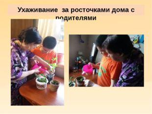 Ухаживание за росточками дома с родителями