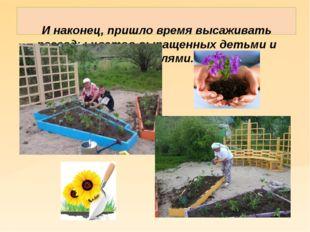И наконец, пришло время высаживать рассады цветов выращенных детьми и родите