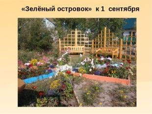 «Зелёный островок» к 1 сентября