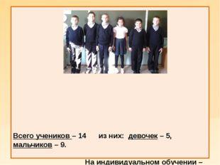 Всего учеников – 14 из них: девочек – 5, мальчиков – 9. На индивидуальном об