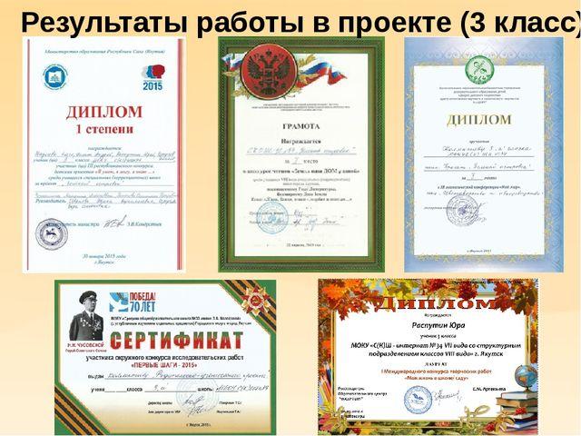 Результаты работы в проекте (3 класс)