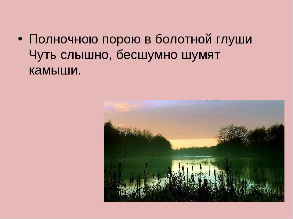 Полночною порою в болотной глуши Чуть слышно, бесшумно шумят камыши. К.Бальмонт