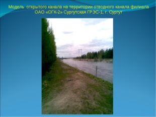 Модель открытого канала на территории отводного канала филиала ОАО «ОГК-2» Су