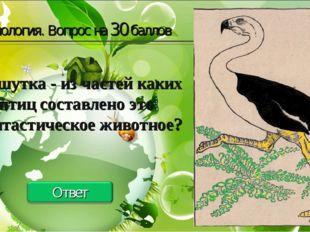 Биология. Вопрос на 30 баллов Зоошутка - из частей каких птиц составлено это