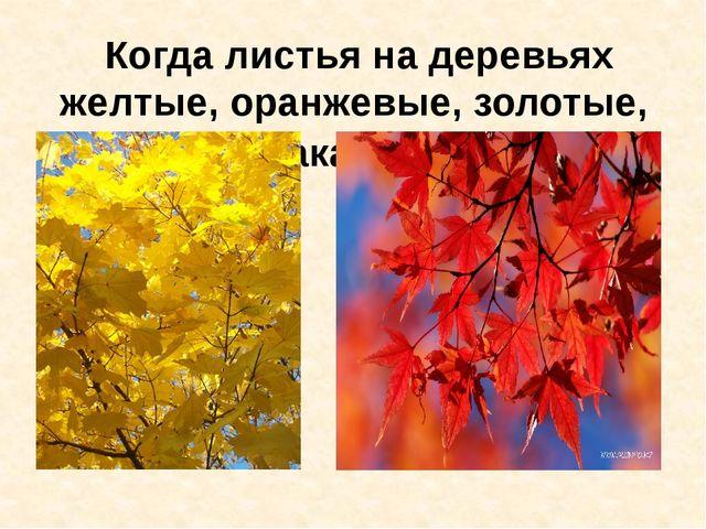 Когда листья на деревьях желтые, оранжевые, золотые, осень какая…золотая.