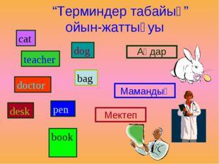 """""""Терминдер табайық"""" ойын-жаттығуы cat teacher doctor desk dog bag рen book А"""