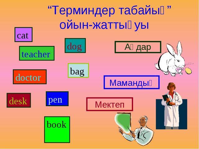"""""""Терминдер табайық"""" ойын-жаттығуы cat teacher doctor desk dog bag рen book А..."""