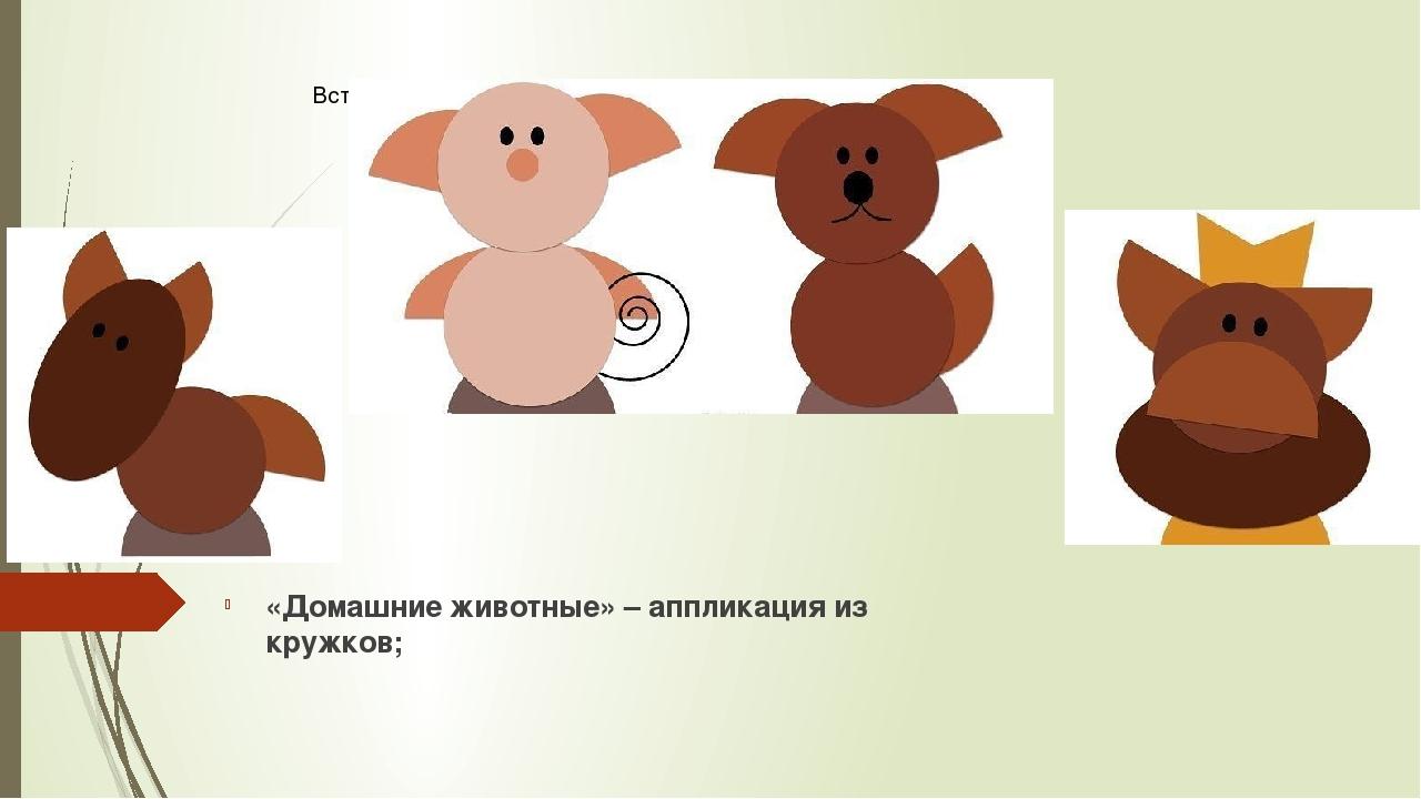 «Домашние животные» – аппликация из кружков;