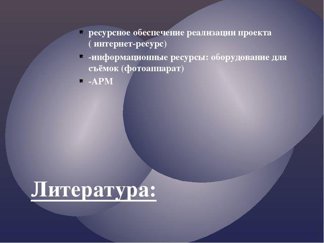 ресурсное обеспечение реализации проекта ( интернет-ресурс) -информационные р...