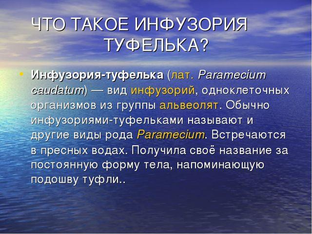 ЧТО ТАКОЕ ИНФУЗОРИЯ ТУФЕЛЬКА? Инфузория-туфелька(лат.Paramecium caudatum)—...