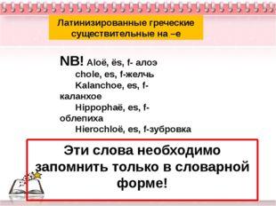 Латинизированные греческие существительные на –e NB! Aloё, ёs, f- алоэ chole,
