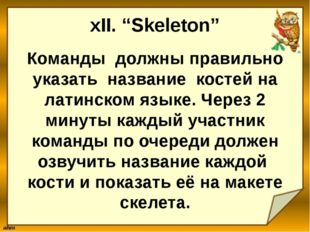 """xII. """"Skeleton"""" Команды должны правильно указать название костей на латинском"""