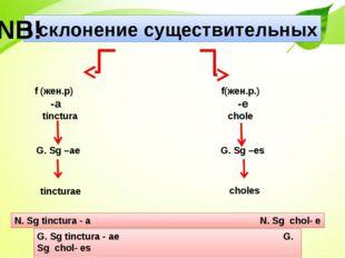 I склонение существительных f (жен.р) -a tinctura f(жен.р.) -е сhole G. Sg –a