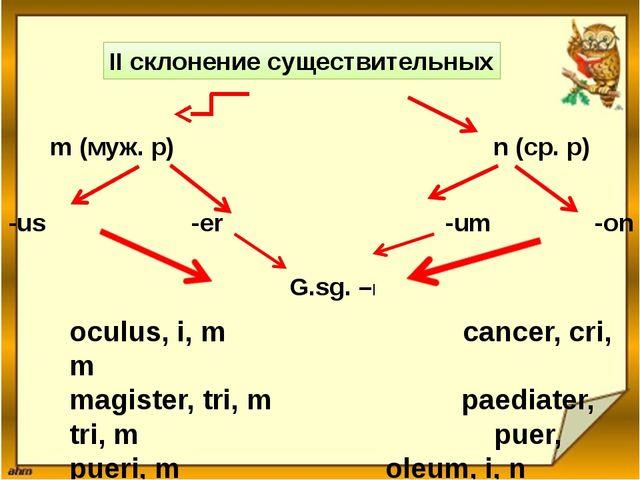 II склонение существительных m (муж. р) n (ср. р) -us -er -um -on G.sg. –I oc...