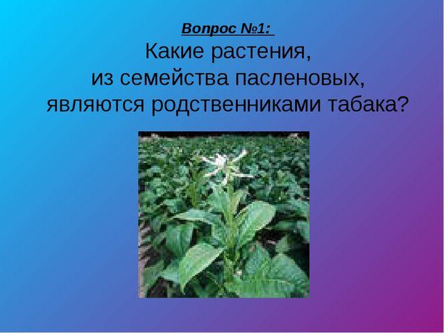 Вопрос №1: Какие растения, из семейства пасленовых, являются родственниками т...