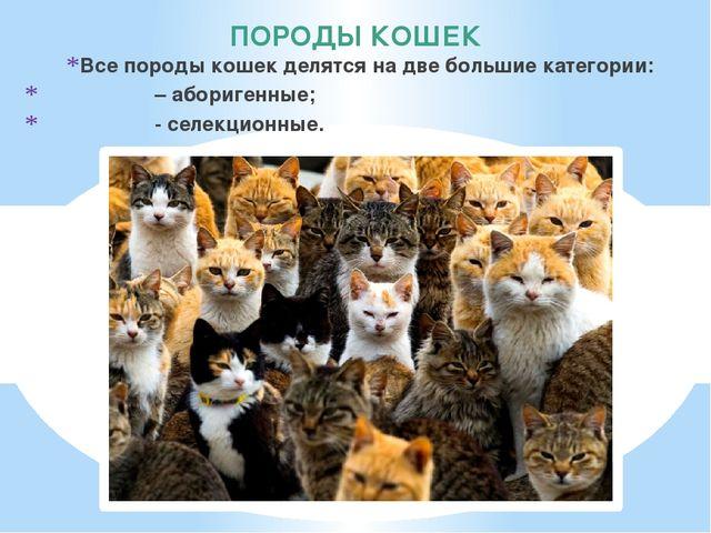 ПОРОДЫ КОШЕК Все породы кошек делятся на две большие категории: – аборигенные...