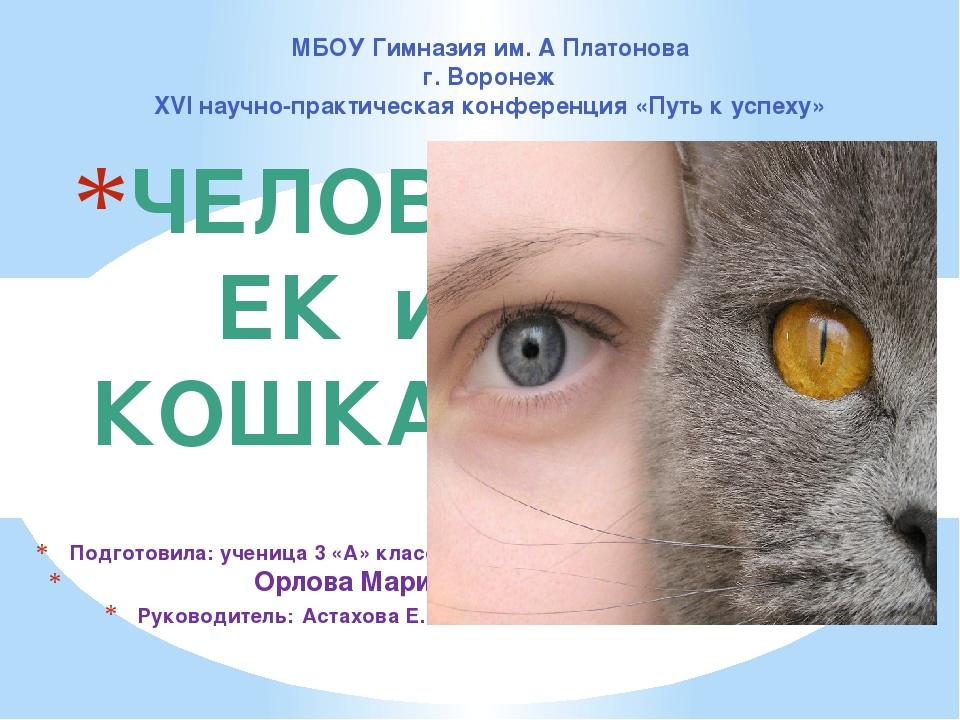ЧЕЛОВЕК и КОШКА Подготовила: ученица 3 «А» класса Орлова Мария Руководитель:...