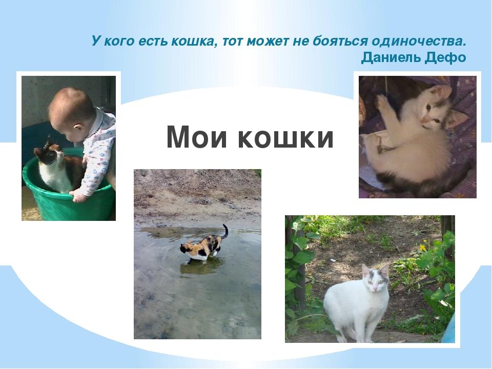 У кого есть кошка, тот может не бояться одиночества. Даниель Дефо Мои кошки