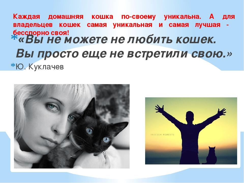 Каждая домашняя кошка по-своему уникальна. А для владельцев кошек самая уника...