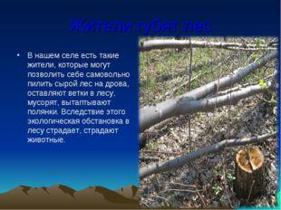 Жители губят лес В нашем селе есть такие жители, которые могут позволить себе