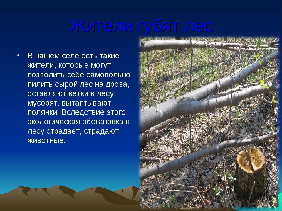 Жители губят лес В нашем селе есть такие жители, которые могут позволить себе...